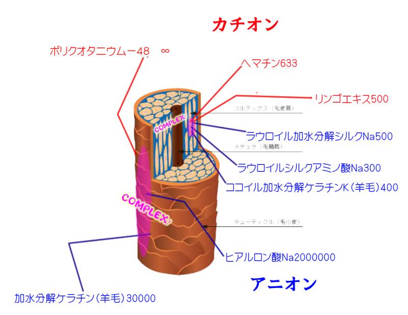 タマコン分子量のコピー.jpg